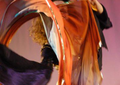 Foto 129 Brauner Schleierschwung transparent
