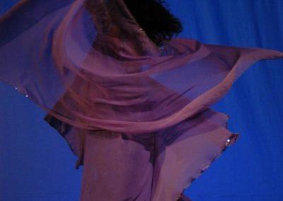 Foto 239 violett v. hinten im Drehen